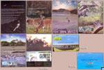 Sri Lanka Stamps 2016 Folder - Kumana National Park, Presentation Pack