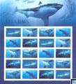 USA Fish Stamps 2017 - Sharks, Sheet